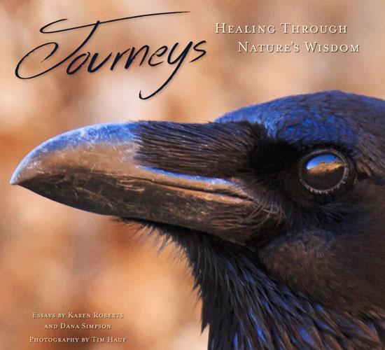 Journeys Healing
