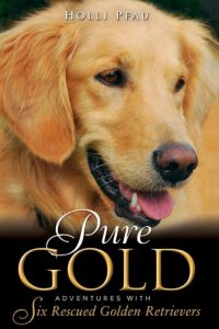 Pure Gold book cover