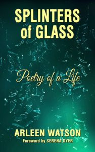 Splinters of Glass book cover