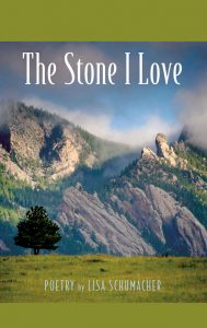 The Stone I Love book cover